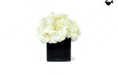 PRODUCTS_FLORITURE_3