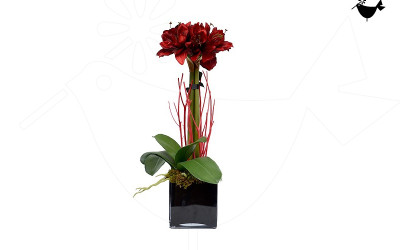 PRODUCTS_FLORITURE_8
